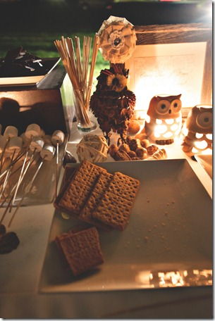 S'mores, Dallas Wedding, Dallas Wedding Planner