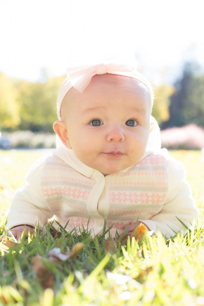 Baby Sweet Peas